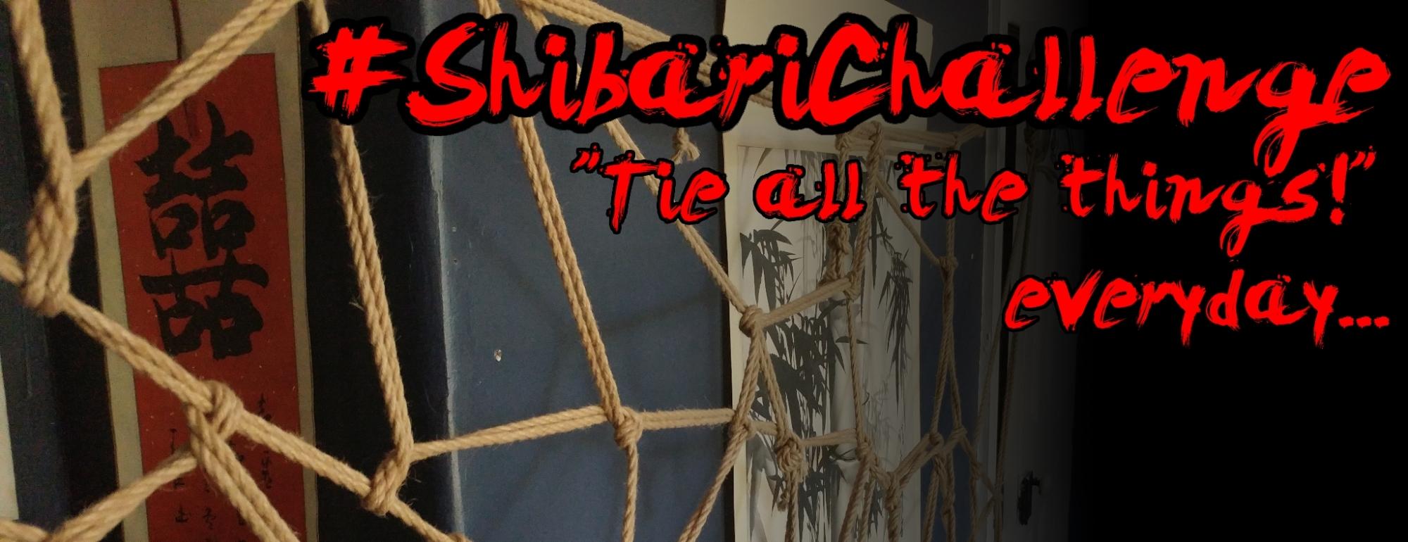 shibari-challenge